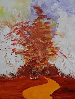 Nancy Fillip - Volcanus Eruptus