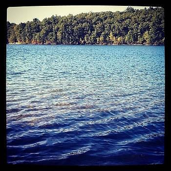 Walden Pond by Linda Cordner