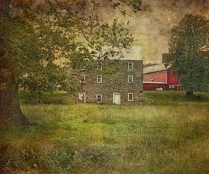 Warne's Mill by Pat Abbott