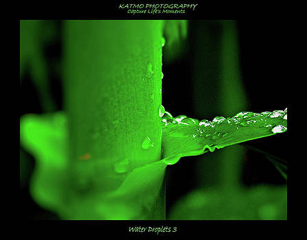 Water Droplets by Katlego Mokubyane