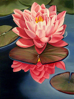 Water Lily by Donna Francis
