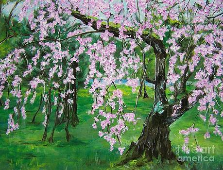 Weeping Cherry by Sharon Wilkens