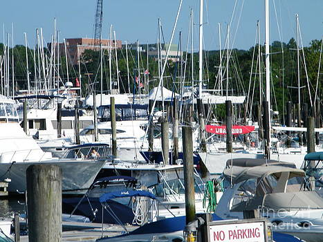 West Shore Marina by Laurence Oliver