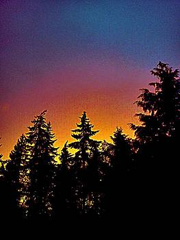 Kevin D Davis - Whidbey Sunset