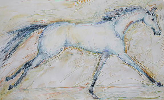White Horse by Rachel Dutton