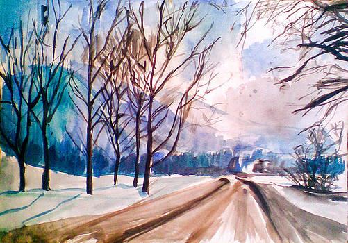 Winter by Vaidos Mihai