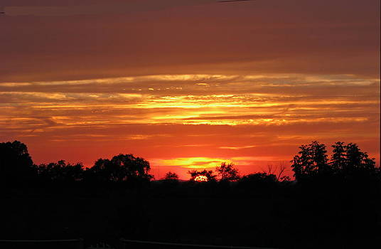 Wisconsin Sunset by Victoria Sheldon