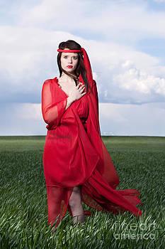 Cindy Singleton - Woman in Red Series