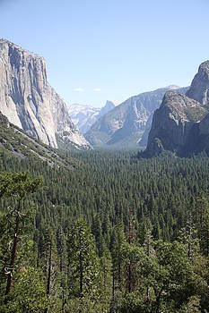Yosemite Valley view by Michael Picco