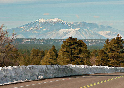 10549 The San Francisco Peaks from Lake Mary Rd by John Prichard