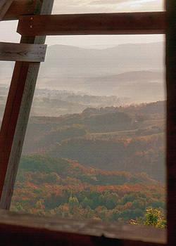 11421 Morning Mist by John Prichard