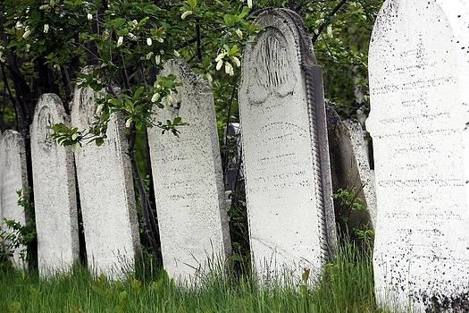 Sophie Vigneault - 1800 cemetery