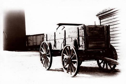 Marcin and Dawid Witukiewicz - 1900 Wagon