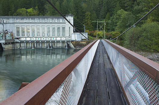 A Suspension Bridge Over The Skagit by Alan Majchrowicz