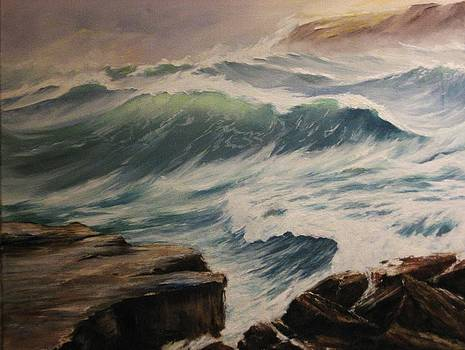After The Storm by Anne Marie Spears