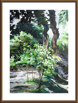 Arboreum by Saira Afzal