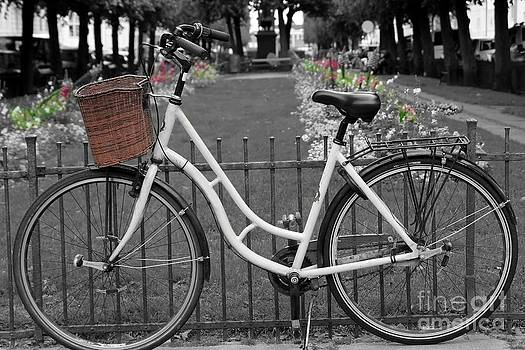 Sophie Vigneault - Bicycle and Flowers