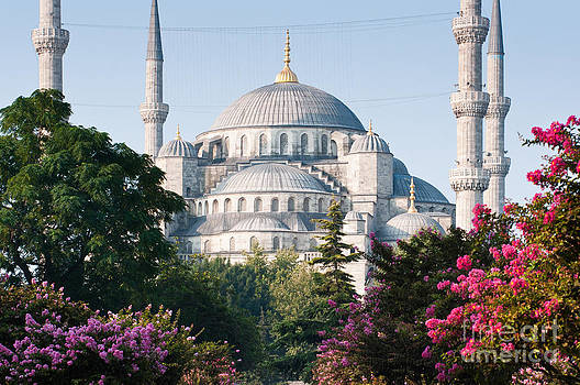 Blue Mosque by Andrew  Michael