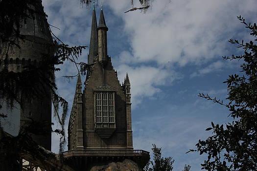 Castle by Shweta Singh