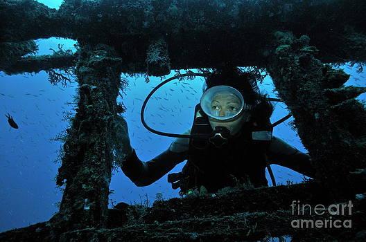 Sami Sarkis - Diver exploring shipwreck