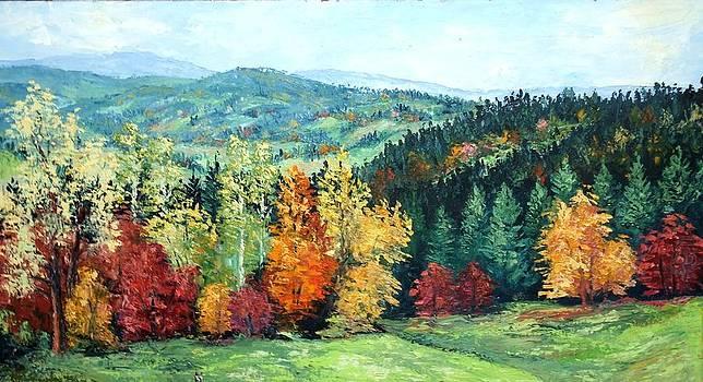 Forest 6 by Stanislav Zhejbal