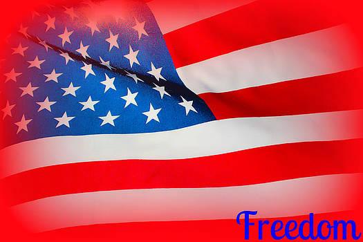 Rebecca Frank - Freedom