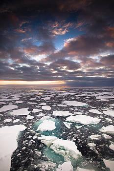 Colin Monteath - Ice Floes At Sunset Near Mertz Glacier