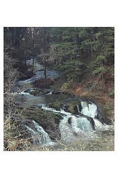 Klakamas River WA by Peggy Quade
