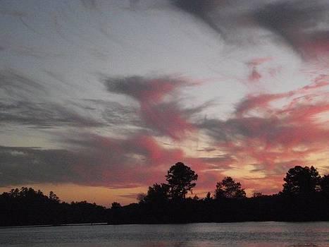 Lake Sunset by Terrill Wilson