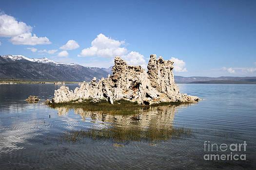 Adam Jewell - Mono Lake Tufas