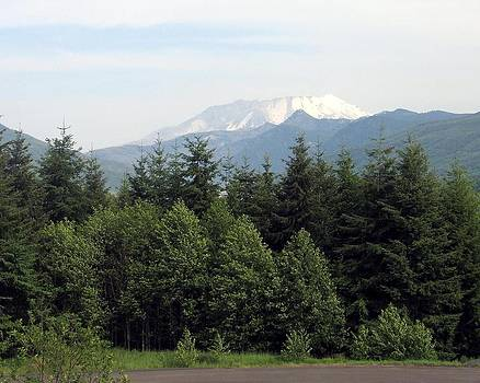 Mt Saint Helens 1 by Diana McClure