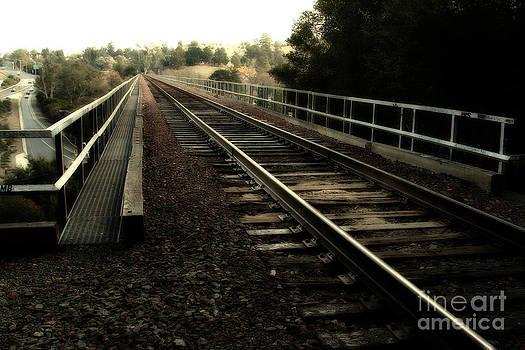 Wingsdomain Art and Photography - Muir Railroad Trestle in Martinez California . 7D10218