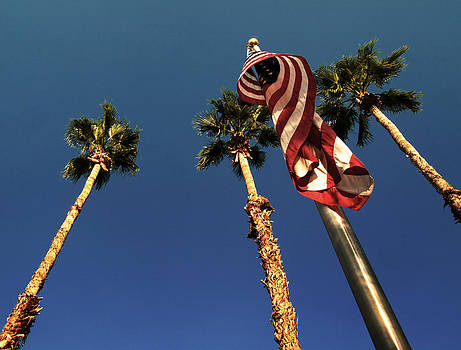 Palm Springs by Aurica Voss