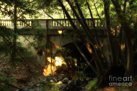 Wingsdomain Art and Photography - Pedestrian Bridge And Strawberry Creek  . 7D10132