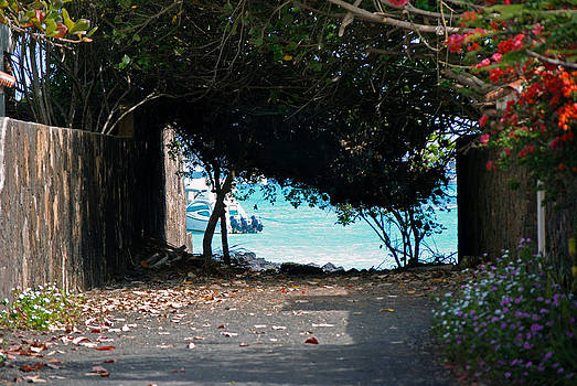 Harvey Barrison - Puerto Ayora - the town