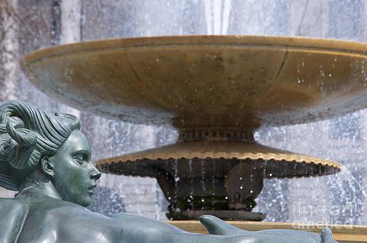 Trafalgar square fountain by Andrew  Michael