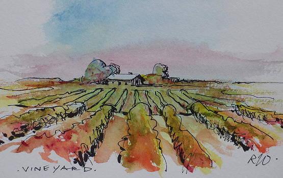 Vineyard by Ron Wilson