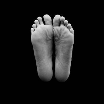 Walks of Life by Larry Shelton