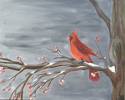 Winter Cardinal by Holly Donohoe