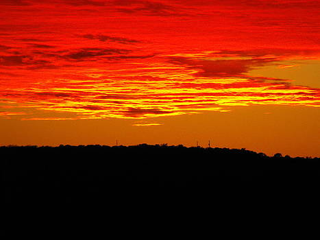 Winter Sunset in Texas by Rebecca Cearley