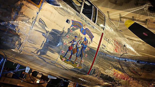 WW II Fighter plane by SM Shahrokni