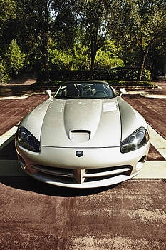 2006 Dodge Viper Up Close and Personal by Frank Feliciano
