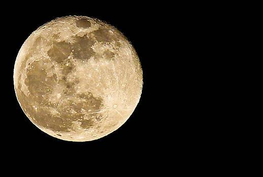 2012 Super Moon by Elizabeth Hart