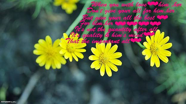 Flowers For You by Gornganogphatchara Kalapun