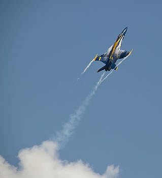 2012 U.S. Navy Blue Angels by Rick Hartigan