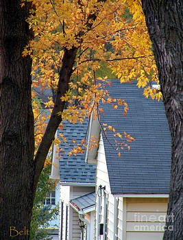 Christine Belt - Autumn in America