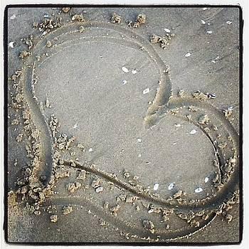 Beach by Leanne H