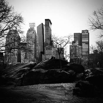 Central Park by Eli Maier