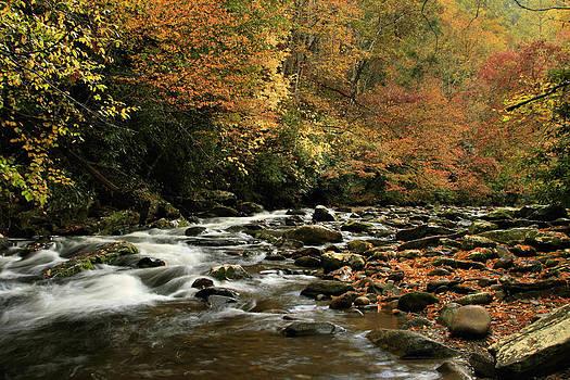 Deep Creek by Karen Lawson
