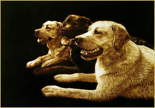 3 Hot Dogs Please by Dino Muradian